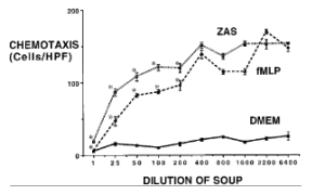 Chicken Soup Graph